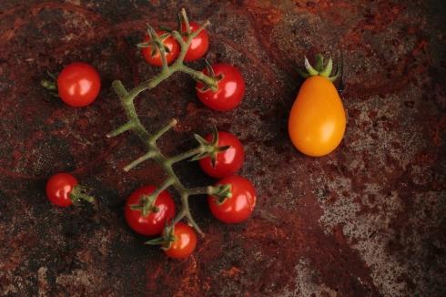 Tomatoes ©2012 HelenaMcMurdo